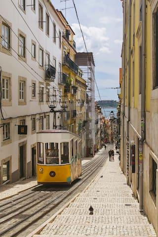 BnBird @ Lisbon