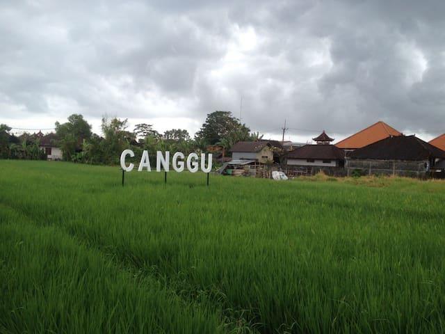 Guidebook Canggu