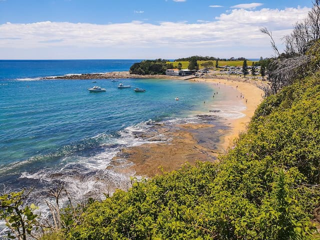 Central Coast Day Trips