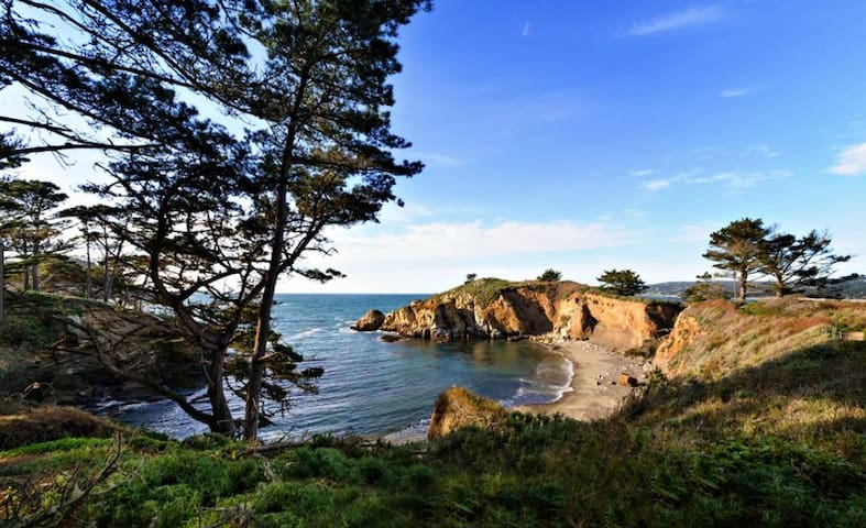 Julie's Carmel-by-the-Sea Guidebook
