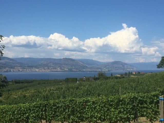 Wine Trail Oasis Guidebook:  Kelowna & West Kelowna