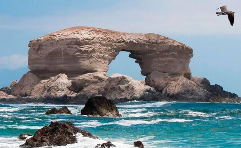 Imprescindibles Antofagasta