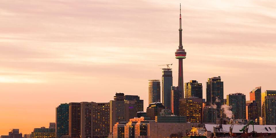 Toronto Favs