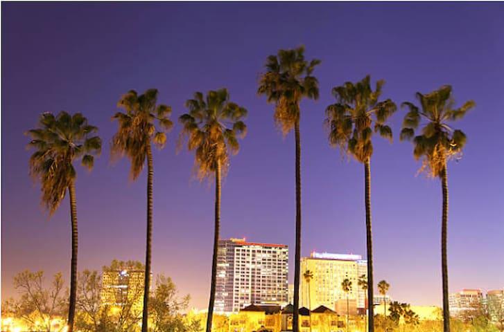 San Jose Restaurants & Sites