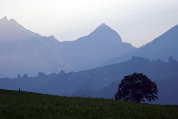 Gruyère et vallée de l'Intyamon, les adresses de Caro
