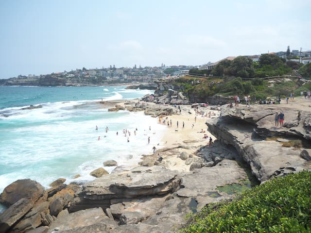 Guidebook for Bronte and Tamarama