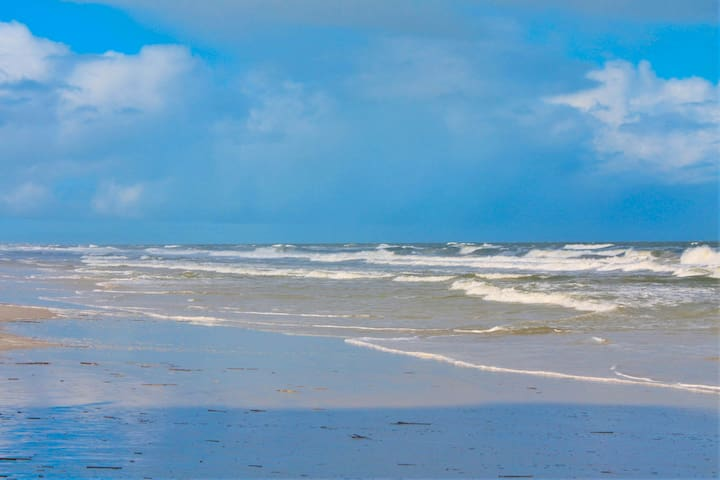 THE ISLAND, JACKSONVILLE & DAY TRIPS