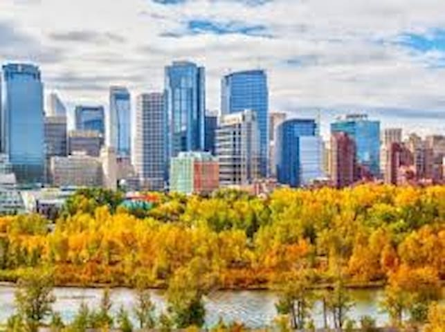 Calgary & Area Guidebook