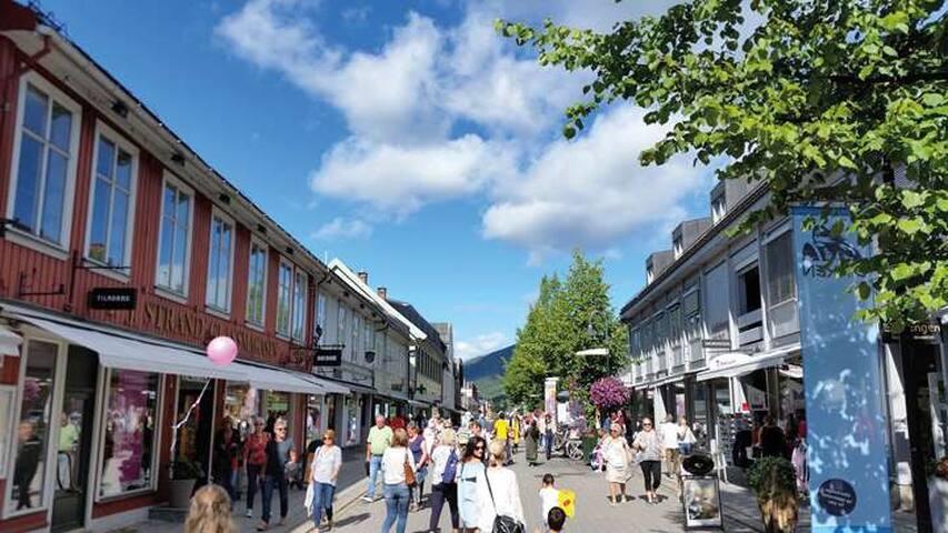 Guidebook for Lillehammer