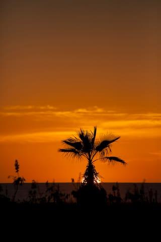 San Pedrito Beach area