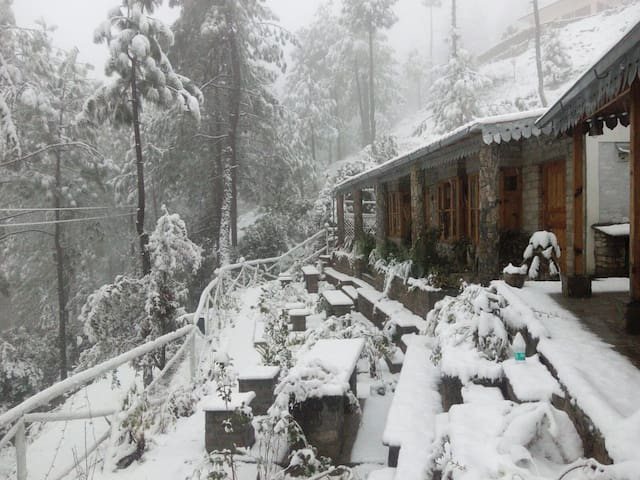 Happiness in Almora