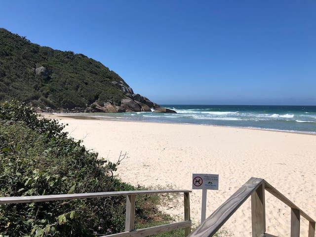 Guidebook for Praia Brava