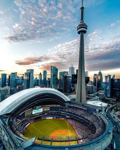 Lets Explore the City of Toronto!