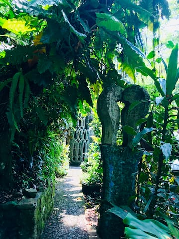 Guidebook for Xilitla