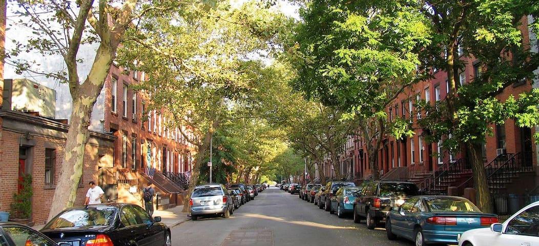 Guidebook for Carroll Gardens, Brooklyn