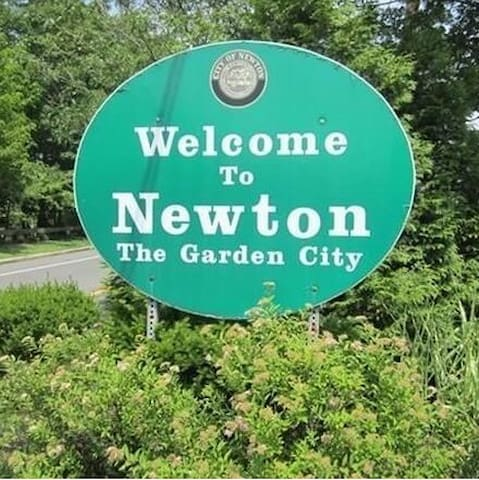 Guidebook for Newton