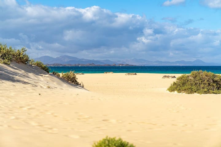 Corralejo Guide + day trips
