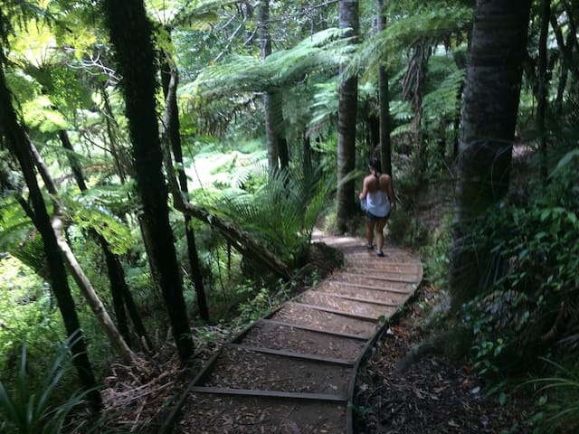 Guidebook for Titirangi​