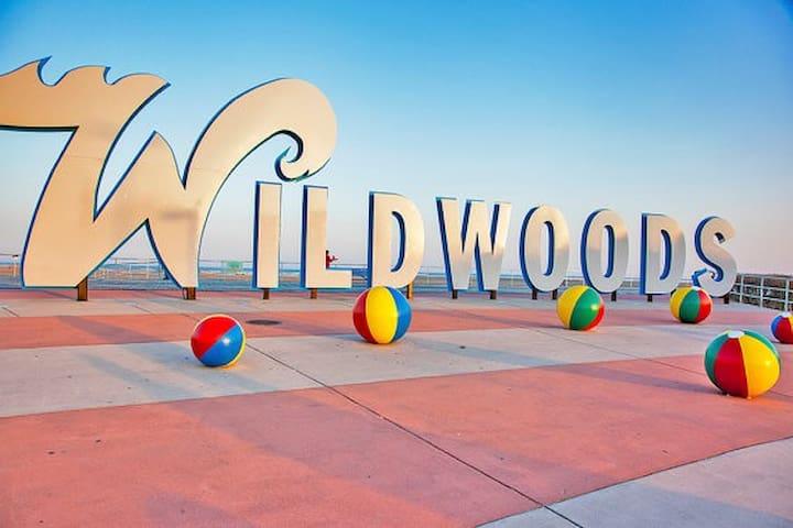 Wildwood Guide Book