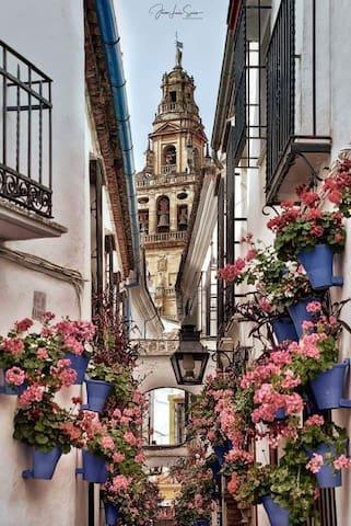 Joe's Guidebook to Córdoba