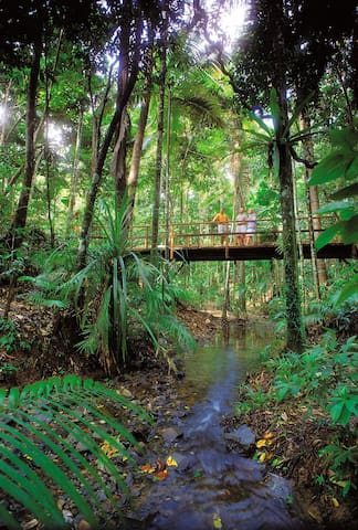 Guidebook for Mossman and the Daintree
