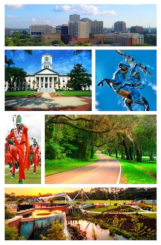 Tallahassee Guidebook by The MInt #828