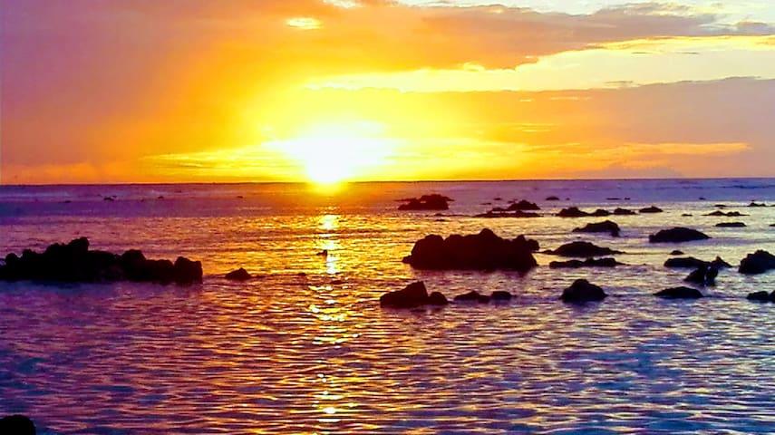 La Réunion. Saint-Pierre et le Sud sauvage