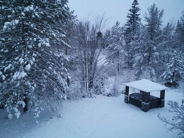 Winter activities in beautiful Chertsey !