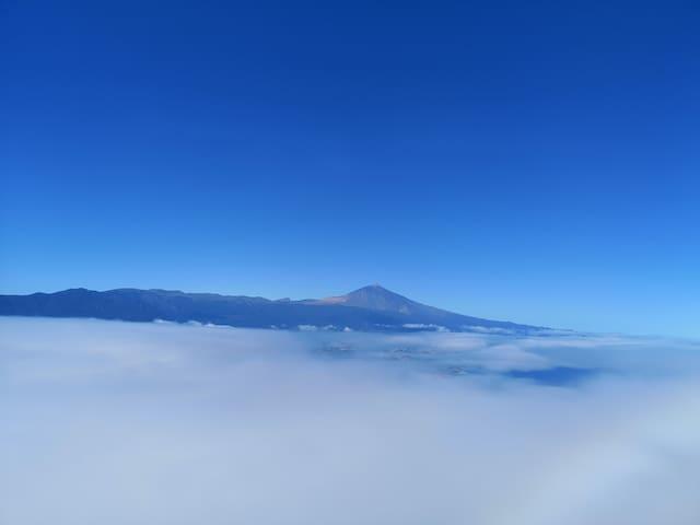 La guía de Tenerife