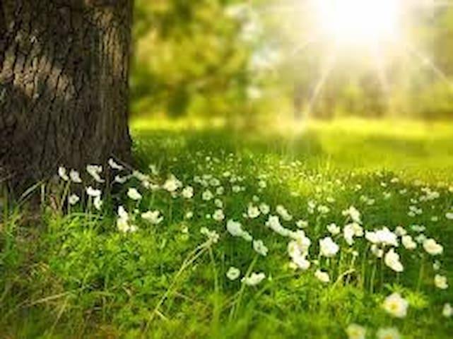 Per chi ama la Natura