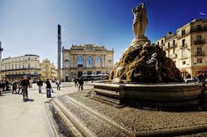 Montpellier hypercentre