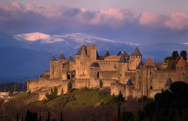Carcassonne et la région