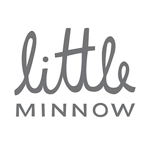 Little Minnow School