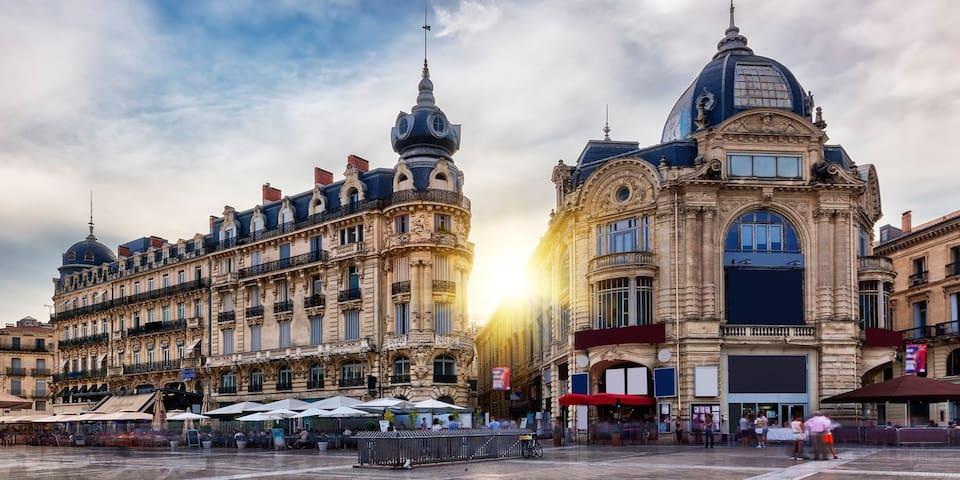 Profitez de votre séjour à Castelnau/Montpellier