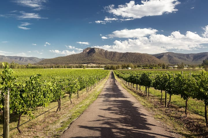 Our recommended wine tour