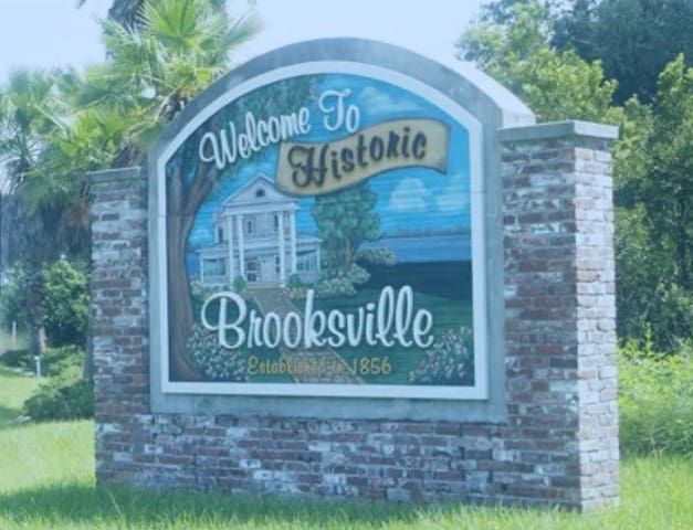 Guidebook for Brooksville The Nest and Historic Brooksville