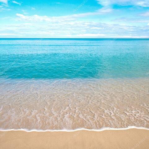 Shores Vacation Guidebook