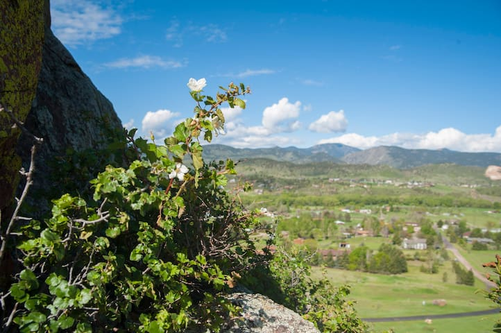 Guidebook for Rocky Mountain Vacation Dream Home