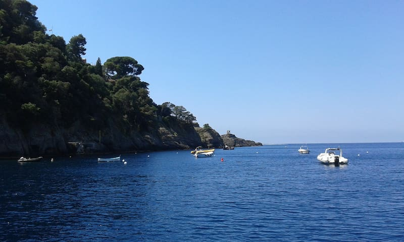 IN KAYAK NEL PARCO