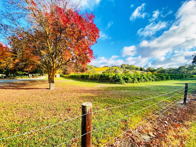 Adelaide Hills Escape Guidebook