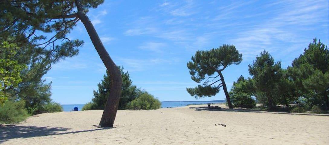 Les plages d'Arès et de la presqu'île du Bassin D'Arcachon