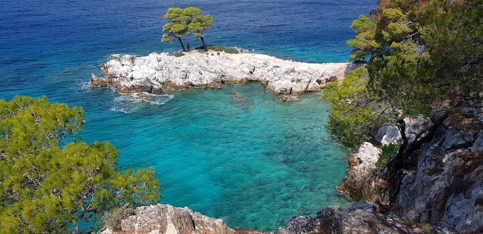 Skopelos, ein Juwel, eine grüne Insel, eingebett in türkisblaues Meer.