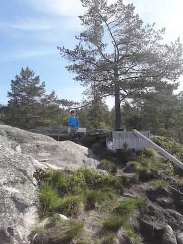 Nærområdet til hytta på Gautestad
