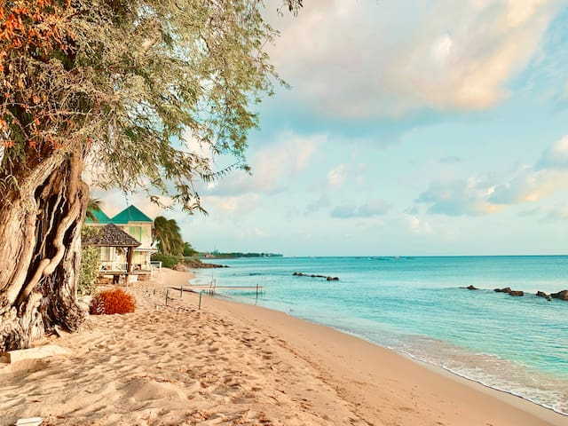 Nelda's Paradise - Nearby beaches, shopping, restaurants, nightlife plus !