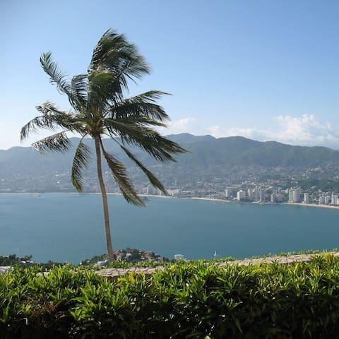 Mis recomendaciones para ti en Acapulco