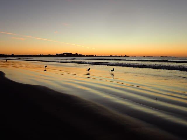 Sea Salt Goolwa Beach Guidebook