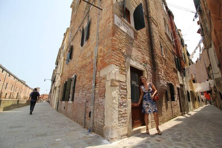 Veneziano per un giorno 🦁, veneziano per sempre ❤️