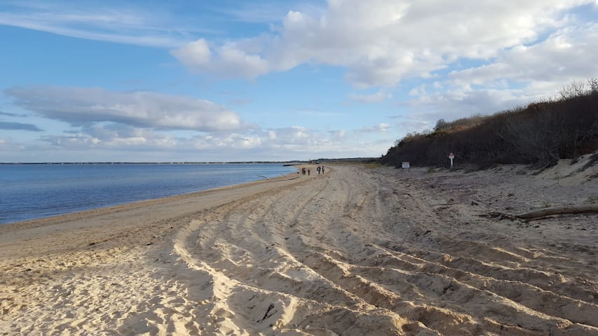Patrick's Guide to The Hamptons from a Neck Path POV
