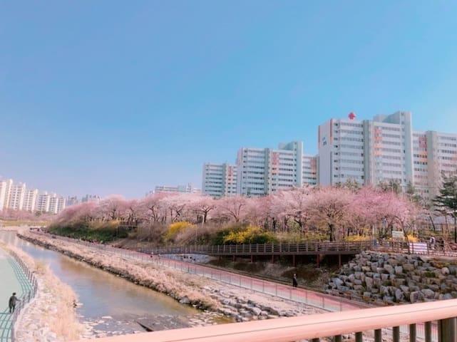 Kang-Tae님의 가이드북
