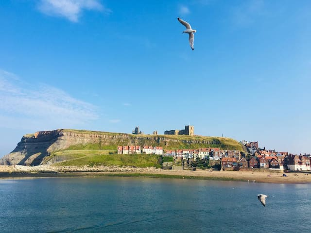 Whitby guidebook